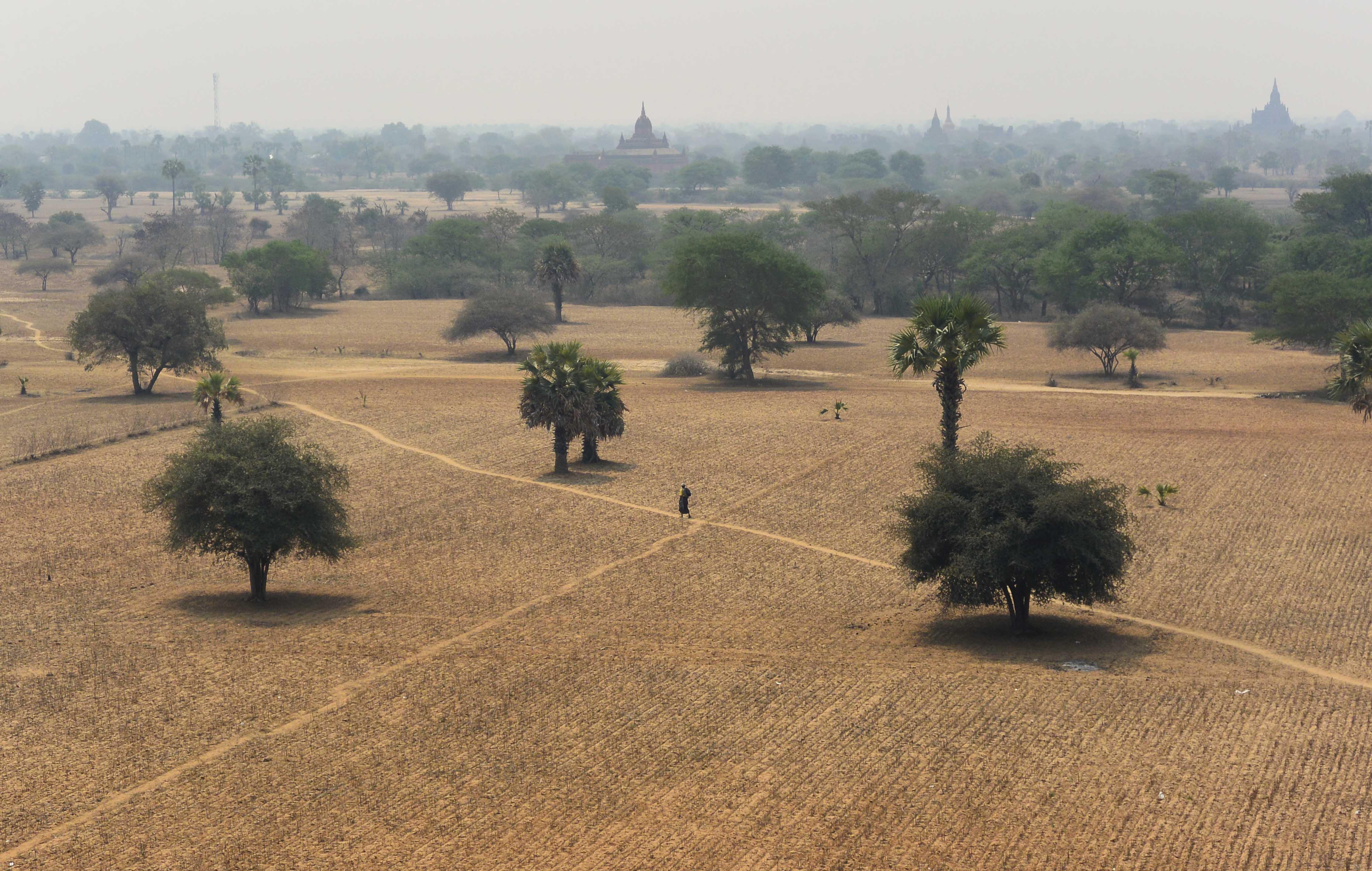 myanmar-bagan-campo