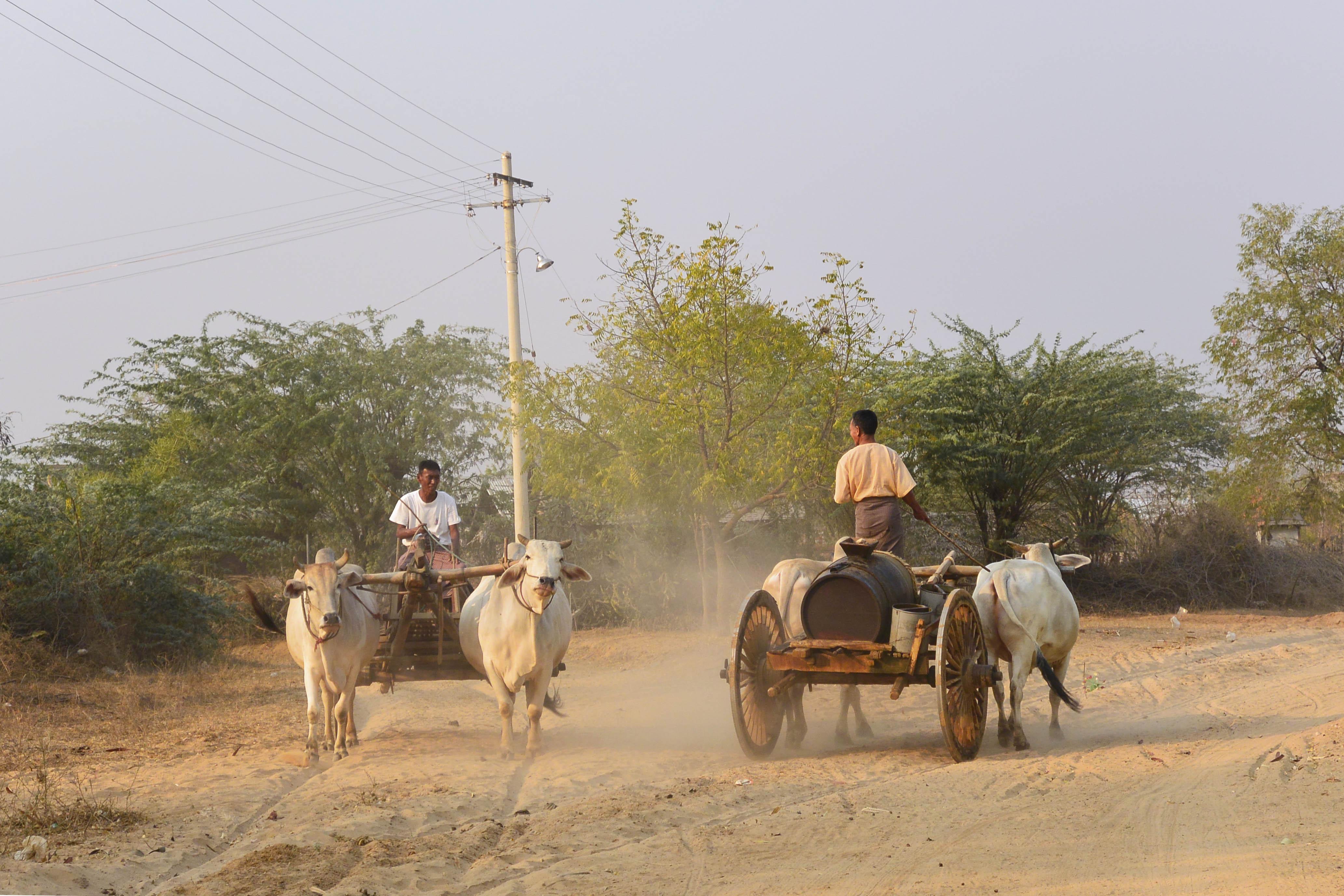 myanmar-hombres-carros