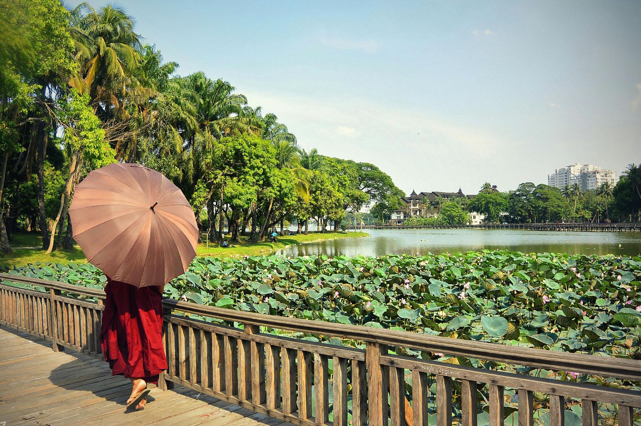 myanmar-yangon-kandawgyi-lake