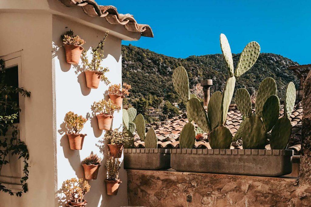 Road trip Tramontana Mallorca, Valldemosa, Deia y Sóller