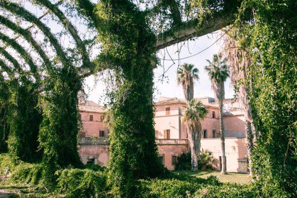 Ayamans gardens