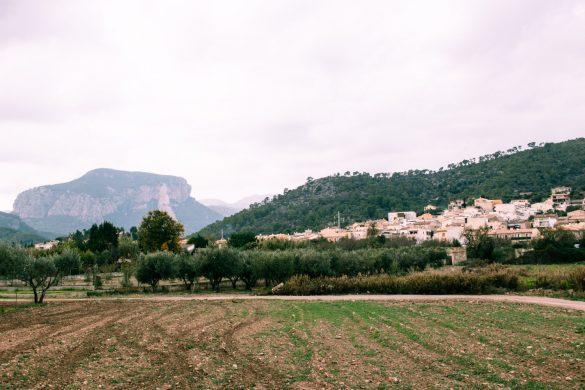 lloseta town