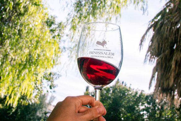wine binissalem
